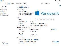 [6521]微軟 Windows 10 專業版 64位元 1809Oct (含註冊)(ISO@4.69GB)(3P)